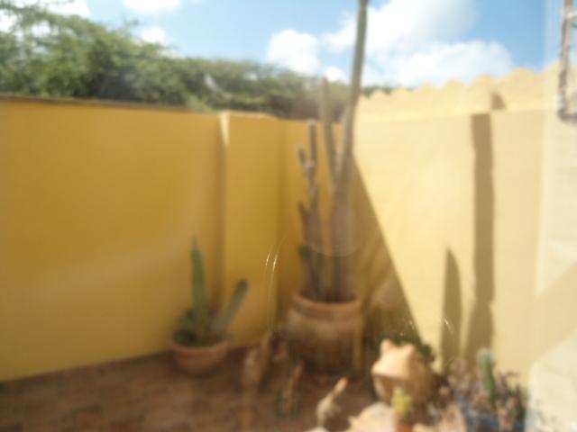 Palma Real 26 photo 7